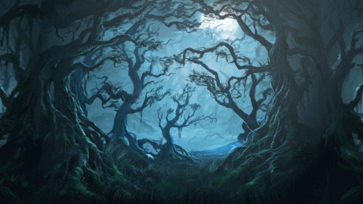 yasak-orman