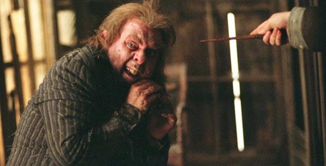 peter pettigrew-fc
