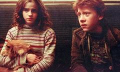 hermione-ron-crookshanks