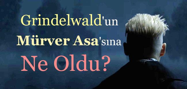 grindelwald-murver-asa-teori
